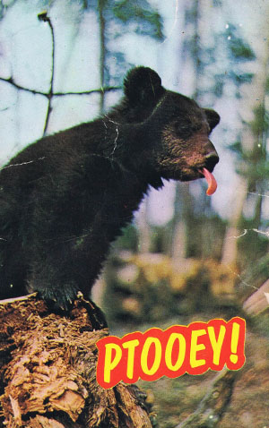 Web editor's all-time favorite postcard, purchased at the store during the late 1960s.